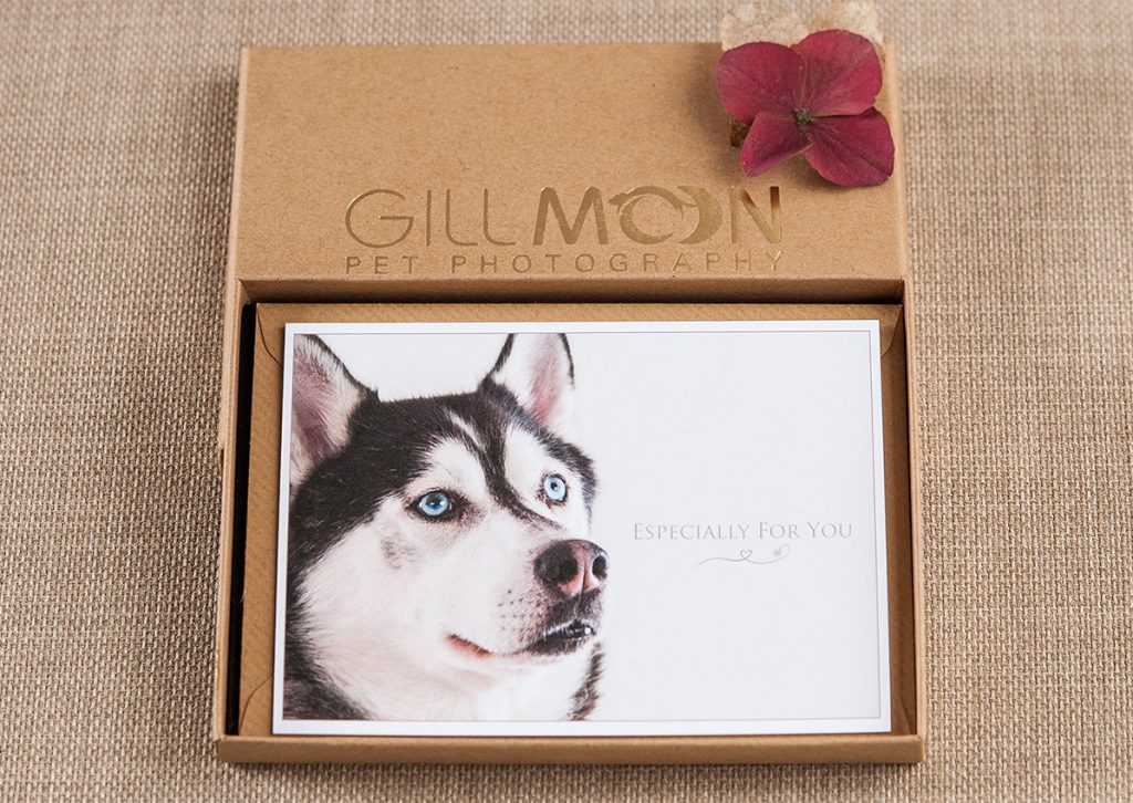 Gill Moon Photography Notecards