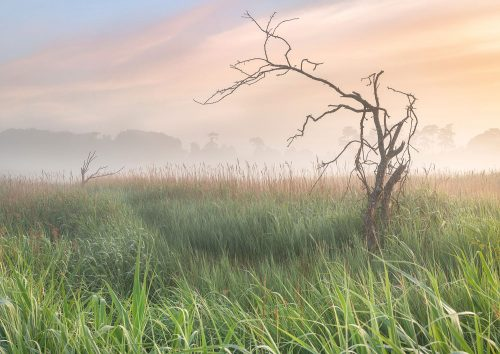 Dawn Over the Marsh by Gill Moon