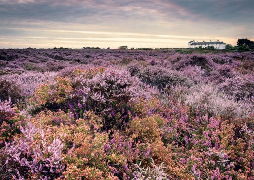 Sumer Dunwich Heath