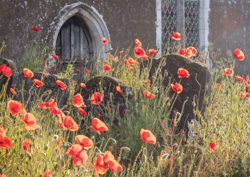 Ramsholt Church Greetings Card