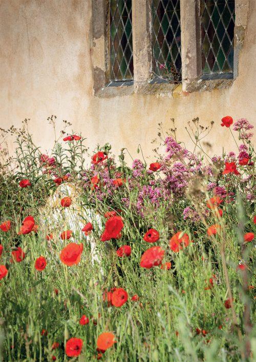 Flowers, All Saints, Ramsholt